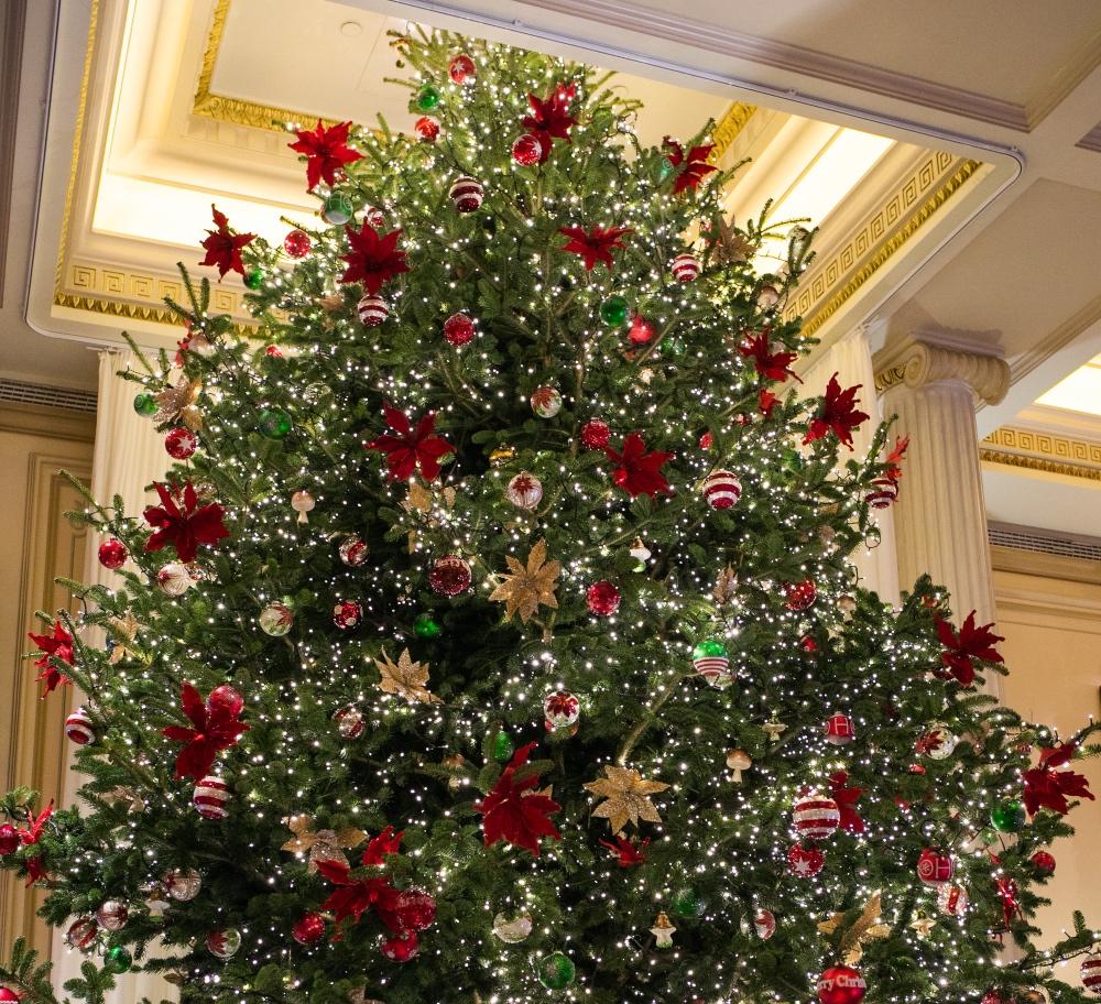 Το ξενοδοχείο Μεγάλη Βρεταννία πραγματοποίησε τη φωταγώγηση του χριστουγεννιάτικου δέντρου